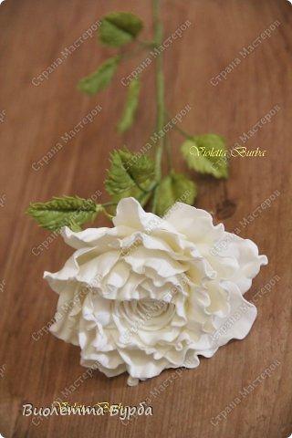 Доброе время суток, уважаемые жители СМ!!! Первый букет из таких же роз, делала в подарок, а это, его повтор. Заказ. Розы, сделаны по МК Светланы Лобович. Светочка, огромное вам спасибо!!! фото 6