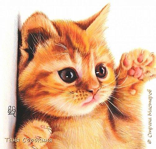 """Продолжаю тренироваться на кошках))). Нашла в инете этого чудного котёнка и решила его нарисовать, тем более, что если долго не рисуешь, то навыки ухудшаются. У меня тоже живёт рыжая бестия Семен, я его уже рисовала котёнком, но он обычный """"дворянин"""",а этот явно породистый! фото 2"""