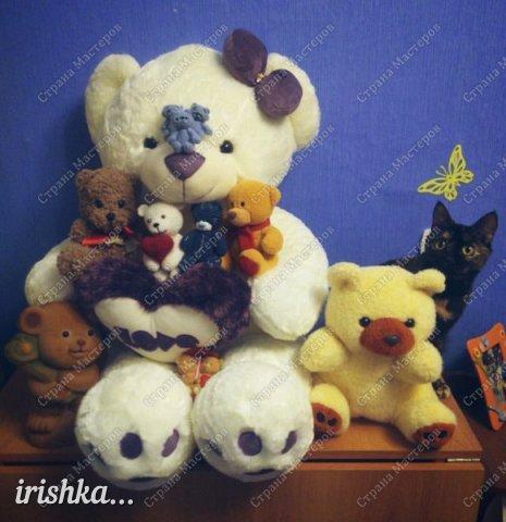 Мишки-малышки фото 19