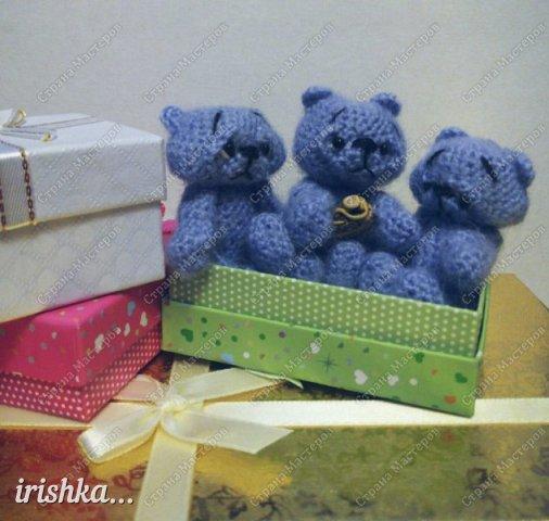 Мишки-малышки фото 9