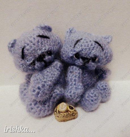 Мишки-малышки фото 12