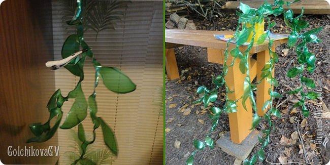 Добрый вечер, дорогие соседи!!!  Решила я выставить свои цветы из пластиковых бутылок и баночек.  Никак не могла закончить, т.к не хватало зеленых бутылок, но помогли друзья. Результат решила вам показать. фото 4