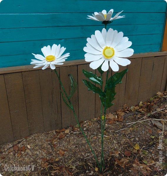 Добрый вечер, дорогие соседи!!!  Решила я выставить свои цветы из пластиковых бутылок и баночек.  Никак не могла закончить, т.к не хватало зеленых бутылок, но помогли друзья. Результат решила вам показать. фото 10