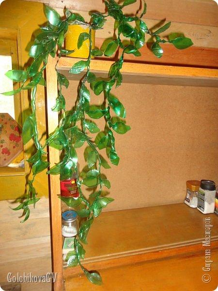 Добрый вечер, дорогие соседи!!!  Решила я выставить свои цветы из пластиковых бутылок и баночек.  Никак не могла закончить, т.к не хватало зеленых бутылок, но помогли друзья. Результат решила вам показать. фото 2