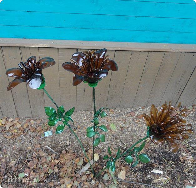 Добрый вечер, дорогие соседи!!!  Решила я выставить свои цветы из пластиковых бутылок и баночек.  Никак не могла закончить, т.к не хватало зеленых бутылок, но помогли друзья. Результат решила вам показать. фото 17