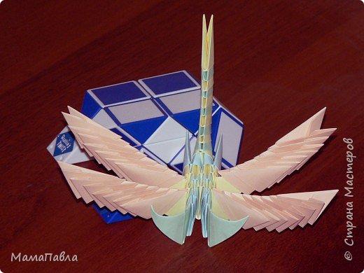 Оригами модульное: Моя певая работа - Стрекоза фото 2