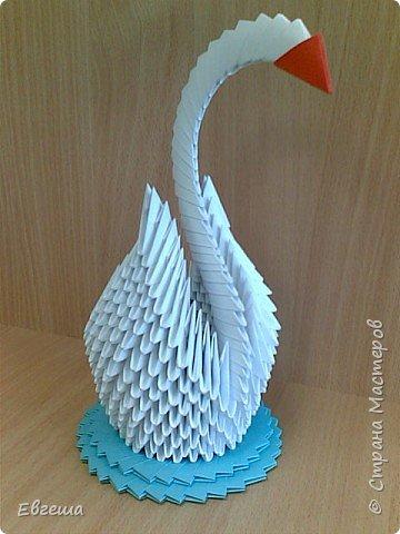 Оригами модульное: Лебедь белая
