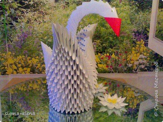 Оригами модульное: Белый лебедь на пруду