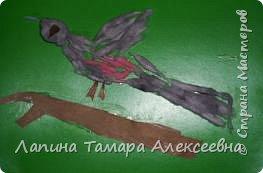 Зимние птицы фото 5