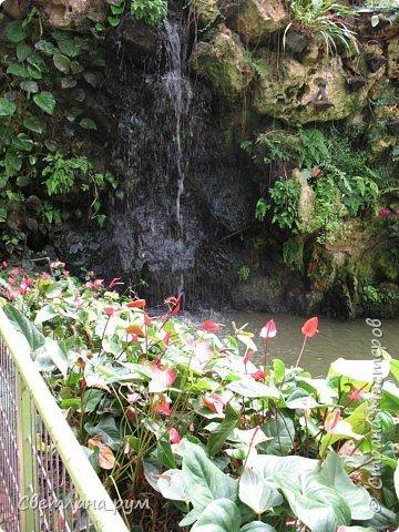 Рукотворный водопад! фото 1