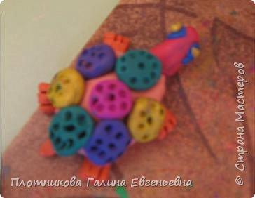 Лепка: Разноцветные черепашки
