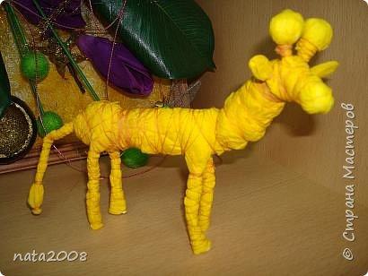 Жирафик фото 2