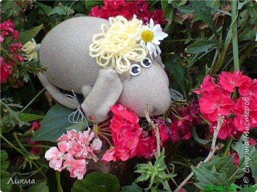 Шитьё: Влюбленная овечка:)) фото 1