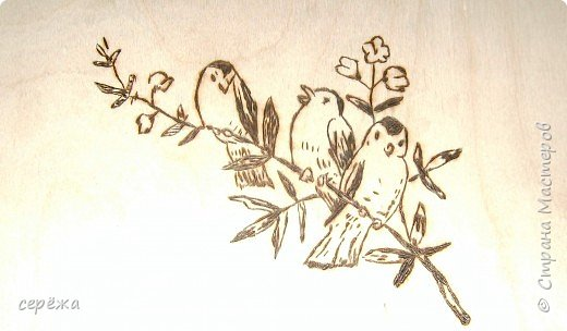 Выжигание по дереву: птички