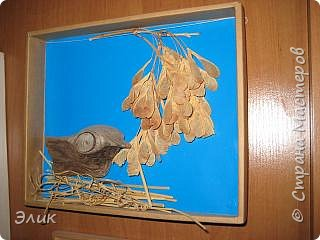 Птичка в гнезде фото 2
