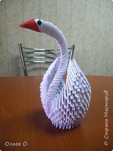Оригами модульное: Наш лебедь фото 1