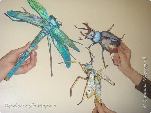 Бумагопластика: царство насекомых