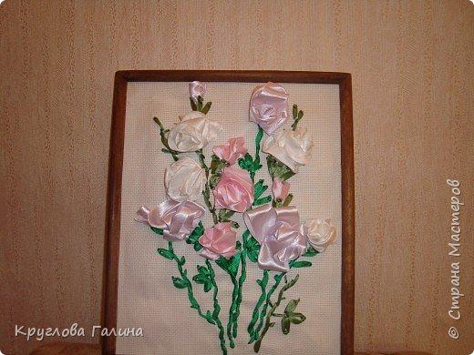 Вышивка: розы в моем саду