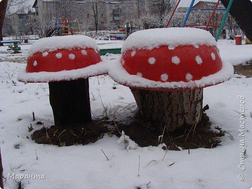 Грибы под снегом