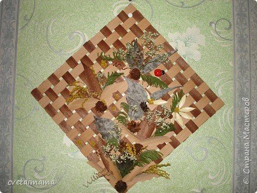 панно из шпона и сухоцветов. фото 1