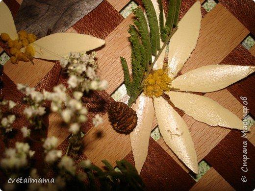 панно из шпона и сухоцветов. фото 3