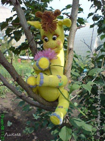 Игрушка мягкая: Жирафик Веснушечка фото 2