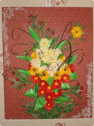 летние цветы фото 1