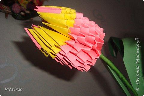 Оригами модульное: Тюльпаны фото 1