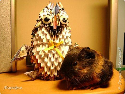 Оригами модульное: Совёнок фото 1