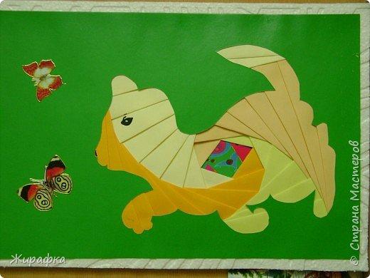 Киса ловит бабочку фото 2