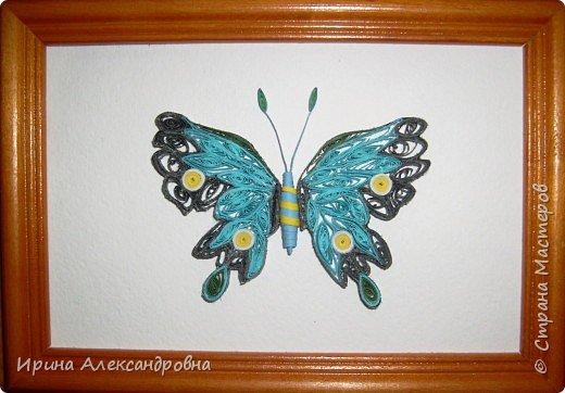 Квиллинг: Бабочка