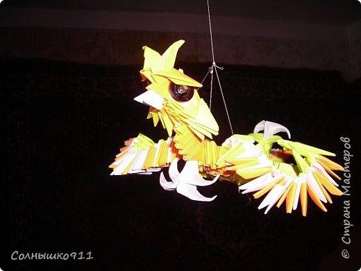 Оригами модульное: Райская птица.