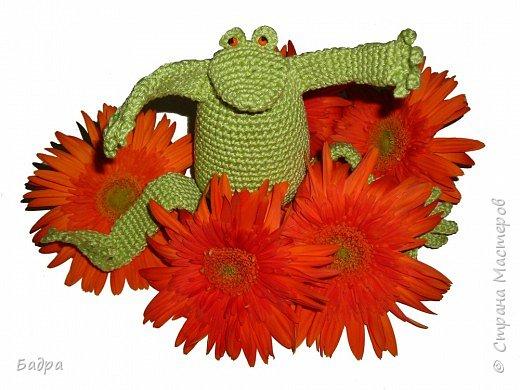 Вязание крючком: Ляга Фрогга