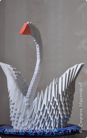 Оригами модульное: Белый лебедь. фото 2