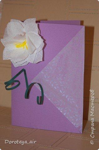 Мои открыточки фото 7