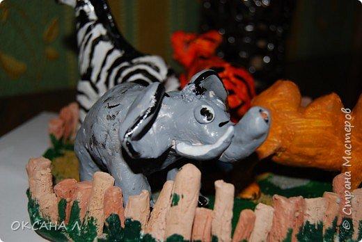 зоопарк фото 4