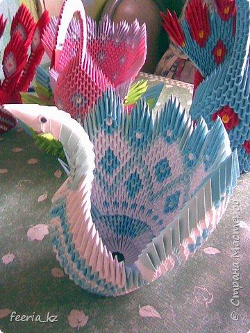 Оригами модульное: Пополнение среди павлинов фото 1