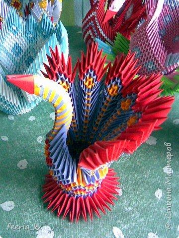 Оригами модульное: пополнение среди павлинчиков