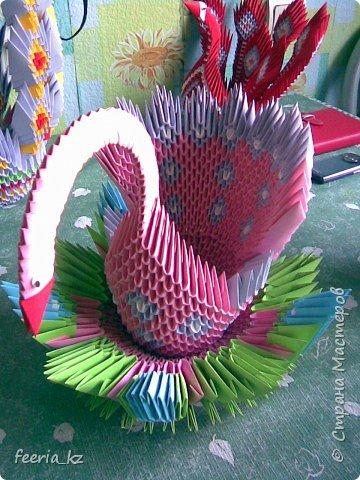 Оригами модульное: Пополнение среди павлинов