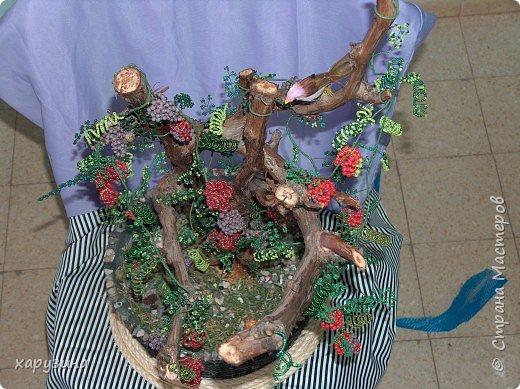 Бисероплетение: Дивный виноград фото 4