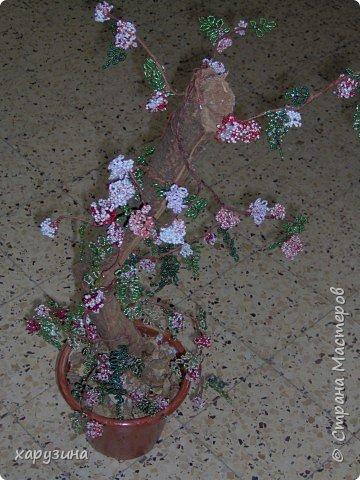 Бисероплетение: Цветущее дерево фото 2
