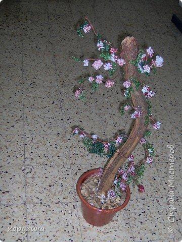 Бисероплетение: Цветущее дерево фото 4
