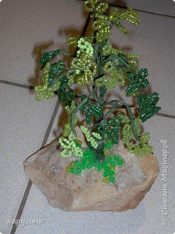 Карнавал деревьев фото 2