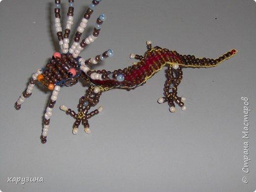 И вновь драконы... фото 2