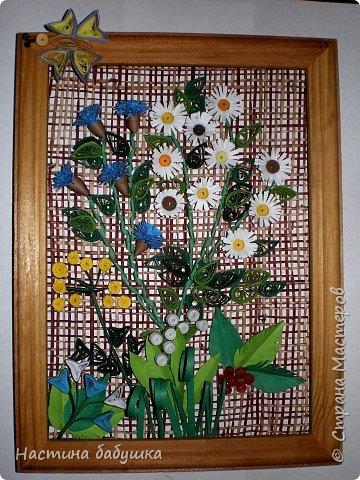 Квиллинг: Полевые цветы