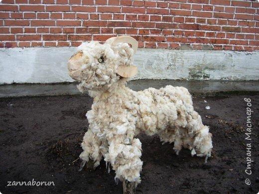 Барашки и овечки из натуральной шерсти. фото 2