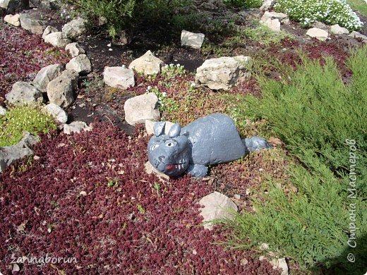 Животные из камней фото 5