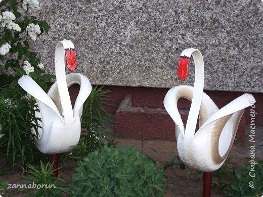 Лебеди из автомобильных покрышек фото 3