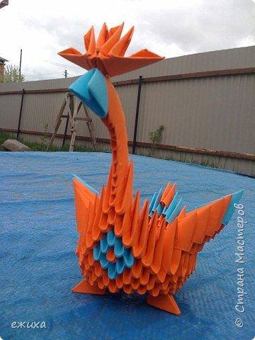 Оригами модульное: Птичья семейка фото 4