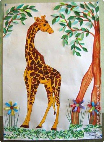Жирафы разные важны, жирафы разные нужны фото 1